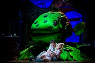 Sam Lupton as Seymour and Stephanie Clift as Audrey in Little Shop of Horrors photo credit Matt Martin